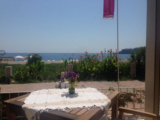 Oyster Residences : Aussicht vom Restaurant