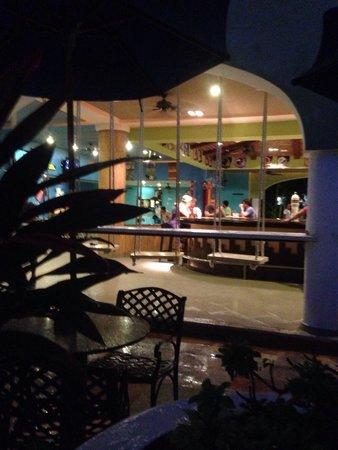 Sandos Playacar Beach Resort : Bar swings