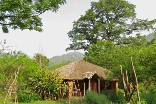 Vanghat Lodge : Restful setting