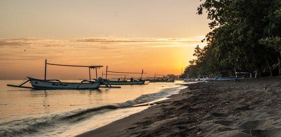 The Lovina: Lovina beach