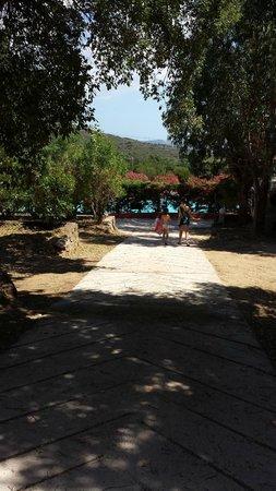 U Pirellu Camping: Allée du camping avec la piscine en fond