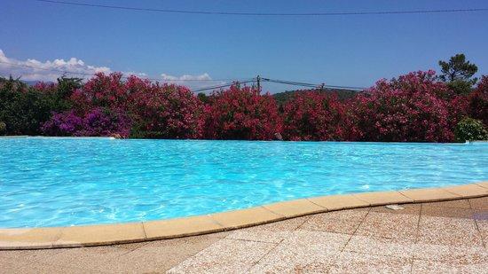 U Pirellu Camping: piscine bordée de lauriers