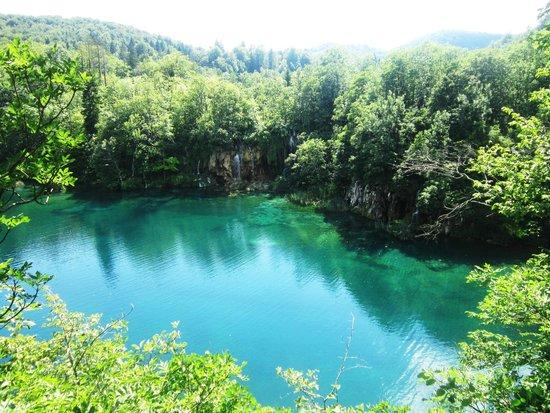 Plitvice Lakes National Park : Plitvice