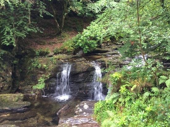 Torc Waterfall: Once you climb the steep stone steps and hike for a few meters you'll come to this pretty, but s