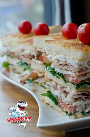 Sharky's Bar and Grill 1: The Turkey Club