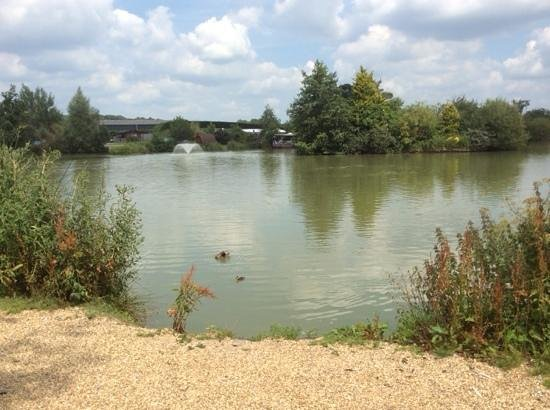 Sumners Ponds : view of the lakeside cafe.