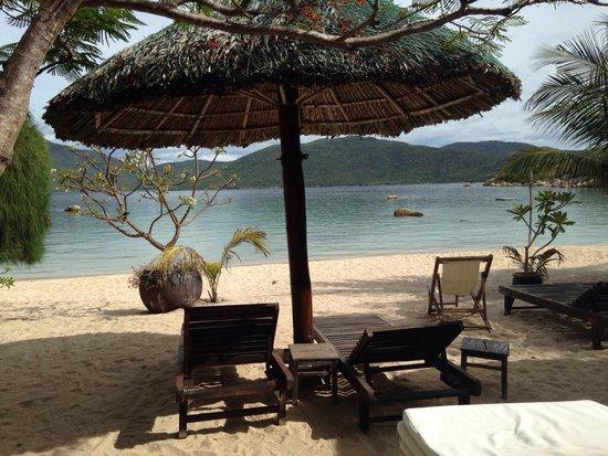 Whale Island Resort: Strand