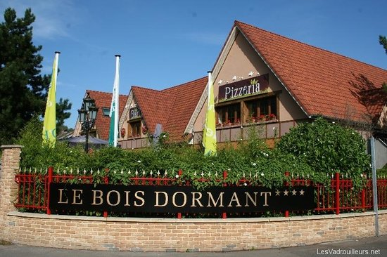 le bar snack Picture of Le Bois Dormant, Quend TripAdvisor # Hotel Le Bois Dormant