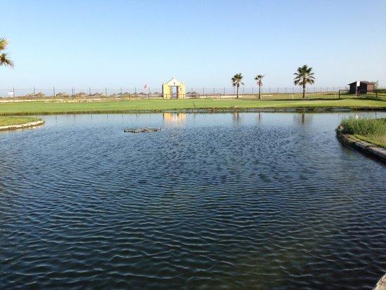 Parador de Malaga Golf: Lago y entrada a la playa