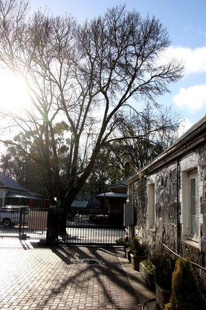Hahndorf Oak Tree Cottages: gorgeous heritage building