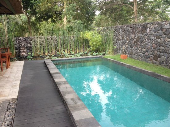 Alila Ubud: Pool Villa and pond