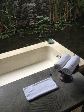 Alila Ubud : Pool bath