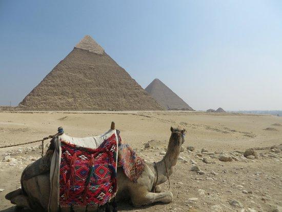 Memphis Tours: Pyramids trip