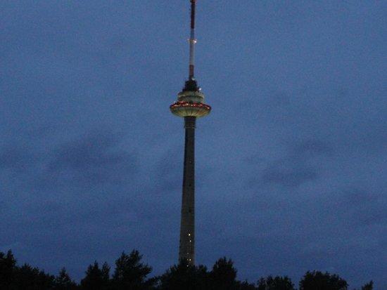 Karolina Hotel & Conference Centre: widok na wieżę telewizyjna z okna pokoju