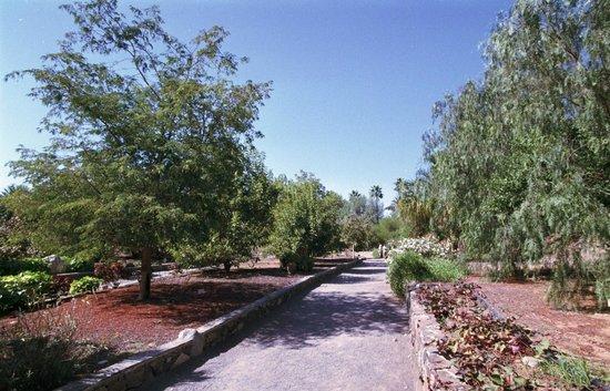 El Parque Botánico de Maspalomas: Paths allowing good access