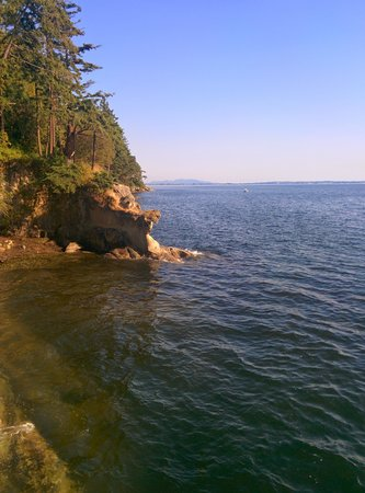 Larrabee State Park: Good trail, went alone and it was fantastic!