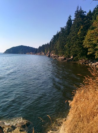 Larrabee State Park: Do it. A+ trail.