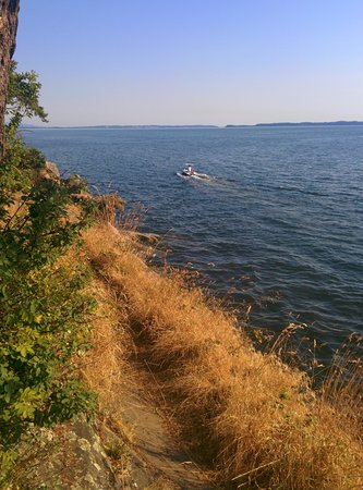 Larrabee State Park: Cliff jumping, beautiful views!