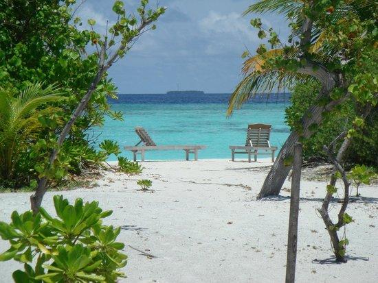 Fun Island Resort: Вид из номера