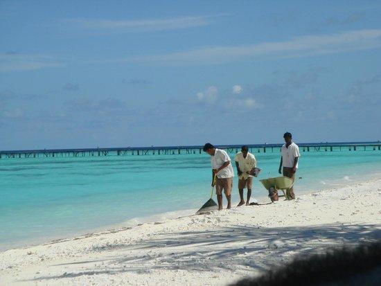 Fun Island Resort: Уборка прибрежной зоны