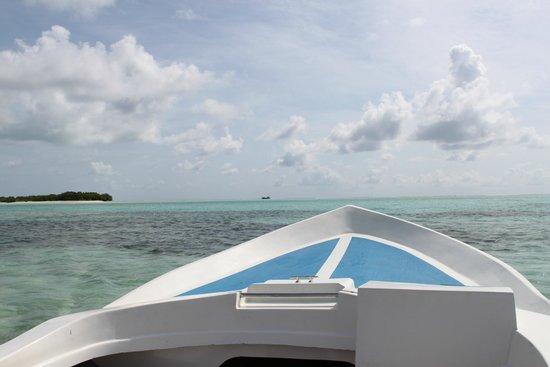 Fun Island Resort: Вид