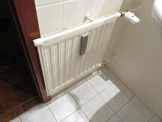 Sonnleiten-Rupert : Very old radiator