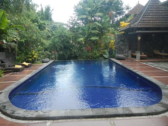 Dewangga Bungalow : Nice pool