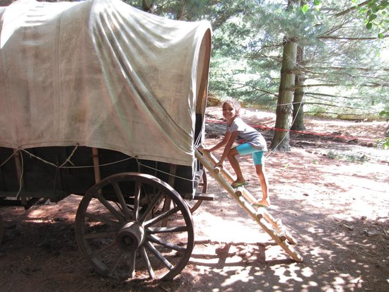 Bookworm Gardens: Covered Wagon: Little House on the Prairie