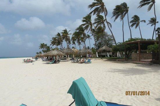 Divi Aruba All Inclusive: The beach in front of the hotel