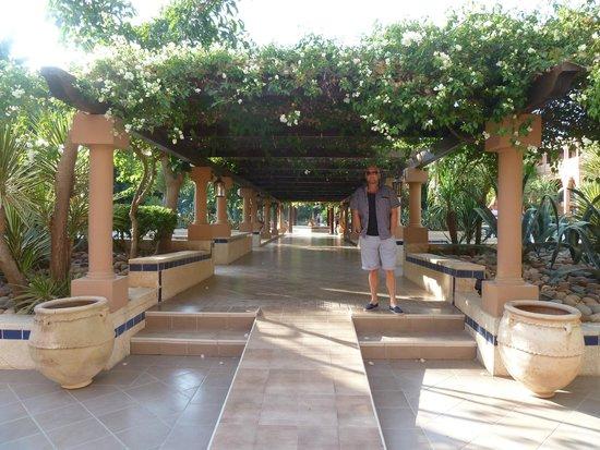 Hotel Riu Tikida Garden: gardens