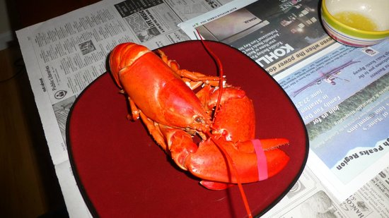 Travelin Lobster: Yum!