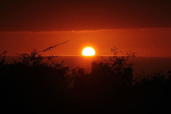 Amafu Forest Lodge: Sunset from Amafu...