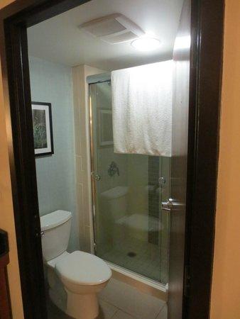 Hyatt Place Auburn Hills : Bathroom / Shower