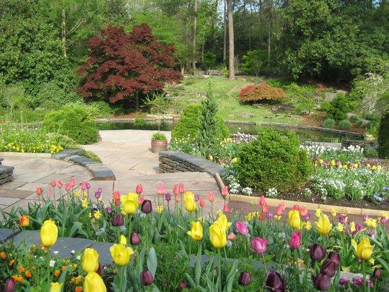 Sarah P. Duke Gardens : Duke Gardens