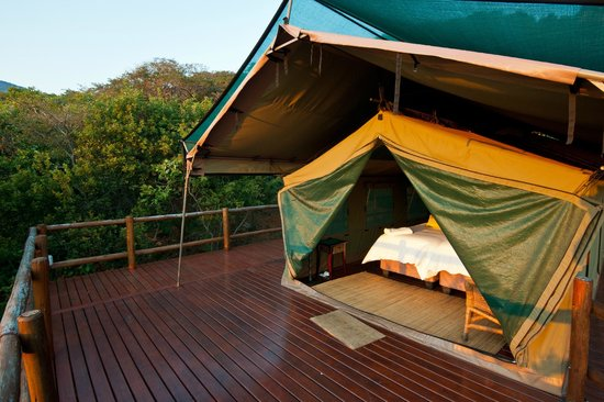 Amafu Forest Lodge : Luxury tented camps...