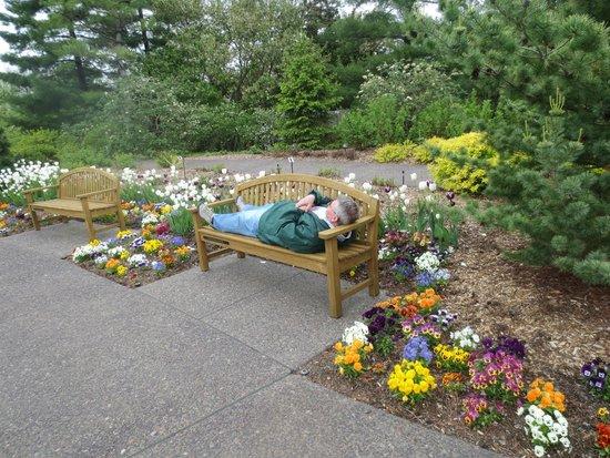 The Japanese Garden Picture Of Missouri Botanical Garden Saint Louis Tripadvisor