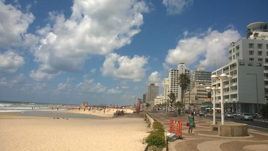 Park Plaza Orchid Tel Aviv : View of the beach