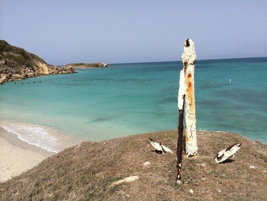 Isla de Caja de Muertos: Like a post card