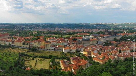 Castle District : Общий вид на Градчаны с высоты птичьего полета