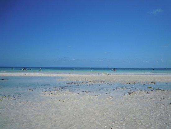SprinClub Djerba Golf & Spa : Il mare al mattino, con la secca emersa per bassa marea
