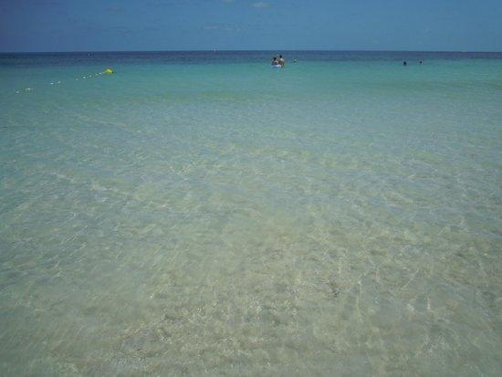 SprinClub Djerba Golf & Spa : Mare, con la secca appena sommersa