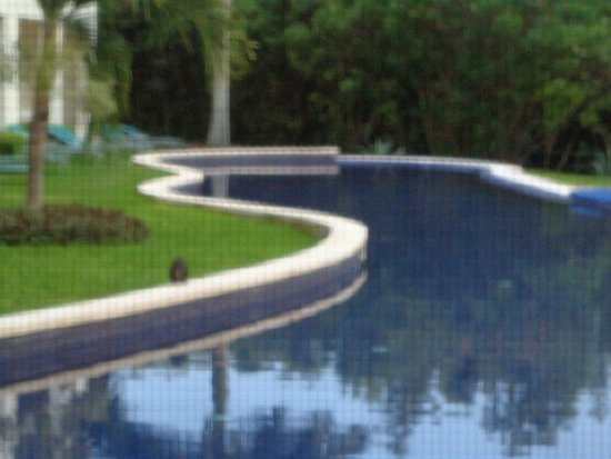 Secrets Silversands Riviera Cancun: The pool outside our door-there are lots of lizards and birds :)
