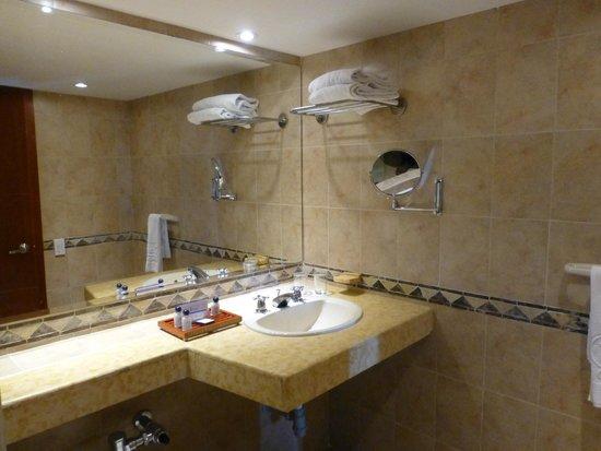 Hotel Dann Cartagena : BAÑOS