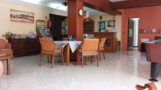 Hotel Antares: Ecco la hall