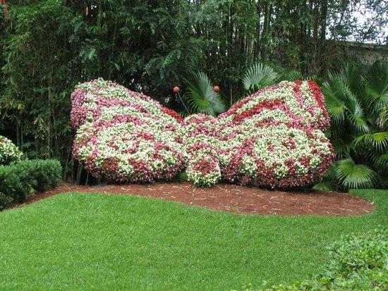 Busch Gardens : The garden