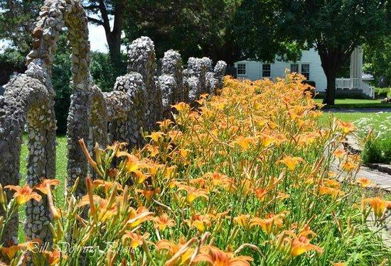 Rockome Gardens : Flower abound at the Gardens