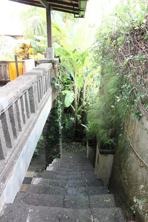 Barong Resort and Spa: Escalier pour aller à la chambre