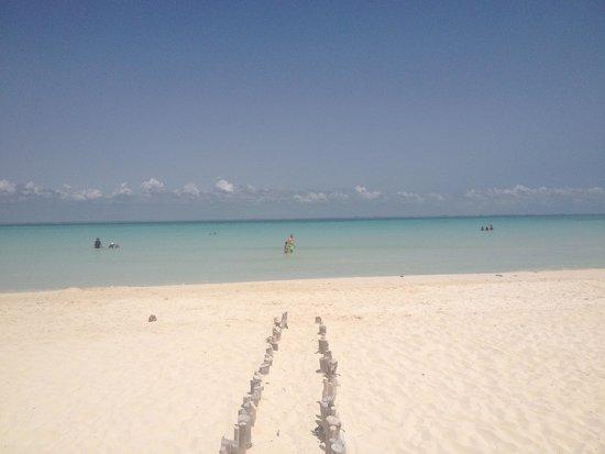 Playa Norte: Una piscina naturale 1