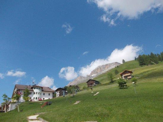 Hotel Alpenrose: il giardino