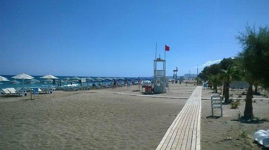 Minos Mare Hotel : La plage de l'hôtel